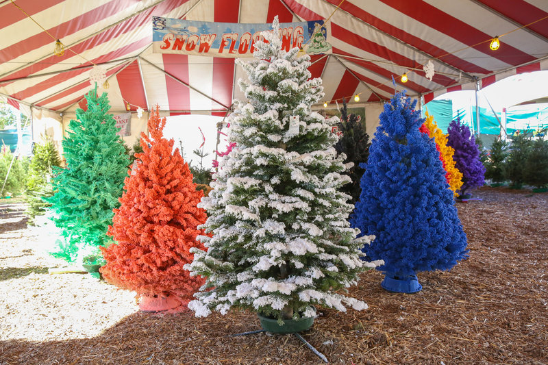 White and colored flocked trees